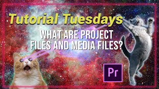What are project files and media files? - Tutorial Tuesdays Episode 1