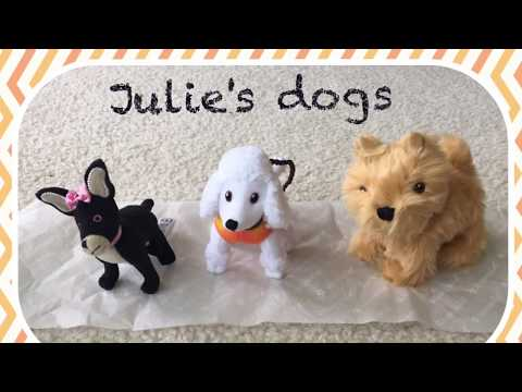 Julie's Dog Walking Set