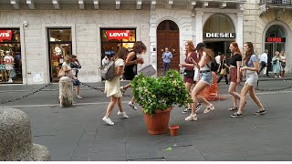 Insane screams / Urla pazzesche / Bushman Prank Italy / Mr Cespuglio