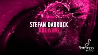 Stefan Dabruck - Knowing [Flamingo Recordings]