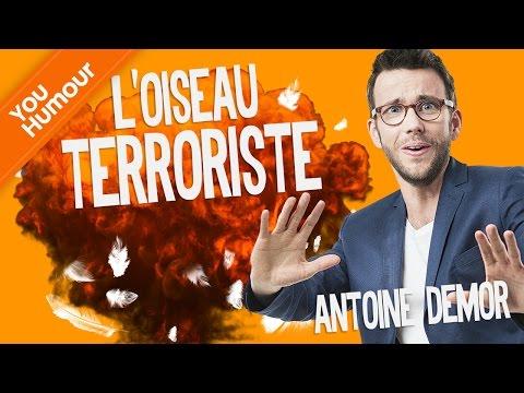 ANTOINE DEMOR - L'oiseau terroriste