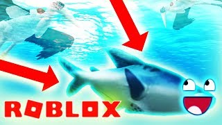 GONE FISHIN'... FISH ADDED TO WILD SAVANNAH IN ROBLOX!! - How To Fish As Stork w/ Gameplay Roleplay
