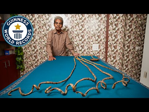 Thumbnail: Longest fingernails on a single hand (ever) - Guinness World Records