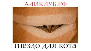 Гнездо для кота  идеяальное жилище для домашнего любимца