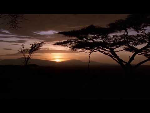 [10 Hours] African Savannah Sunset - Video & Soundscape [1080HD] SlowTV