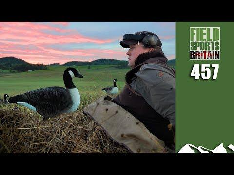 Fieldsports Britain - Start Of The Gooseshooting Season