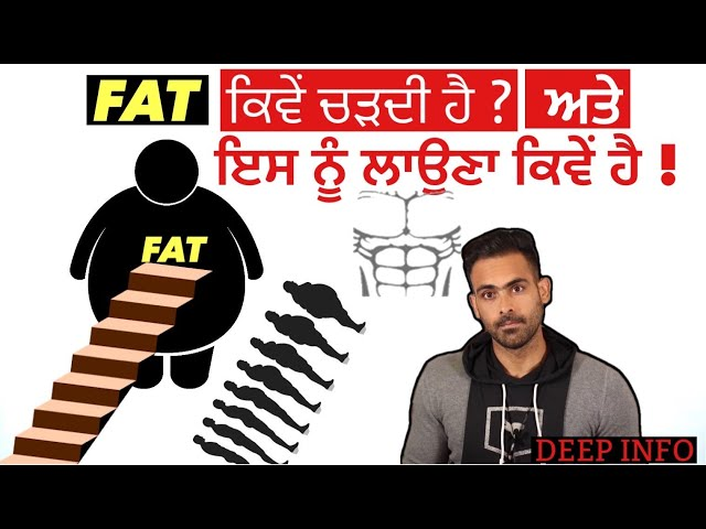How You Become Fat and How To Reverse It Now.  !!  FAT TO FIT DEEP STUDY BASED  TIPS
