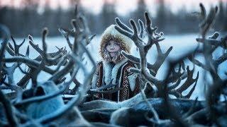 Epic Animal Journeys - Trailer