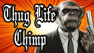 Thug Life Chimp is a Pimp