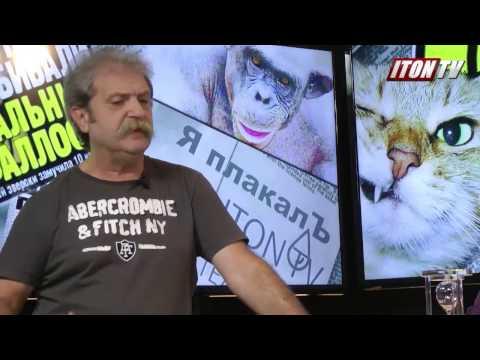 панкратов анекдот про православного кота
