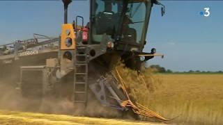 Hauts-de-France : l'heure est à la récolte de lin pour les agriculteurs