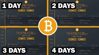 Közel 800 000 tárcában van legalább 1 bitcoin