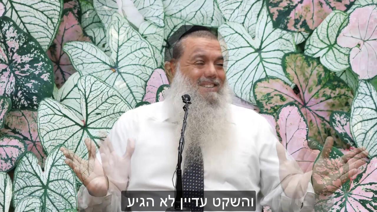 הרב יגאל כהן - אין ייסורים אלא בדעת HD {כתוביות} - מדהים!