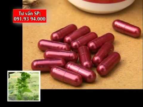 Cây thuốc quý Nần vàng tiên thảo- Hạ cholesterol máu, mỡ máu cao, gan nhiễm mỡ
