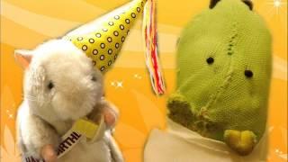Dancing Hamster - Birthday Boy - Happy Birthday (Re-Upload)