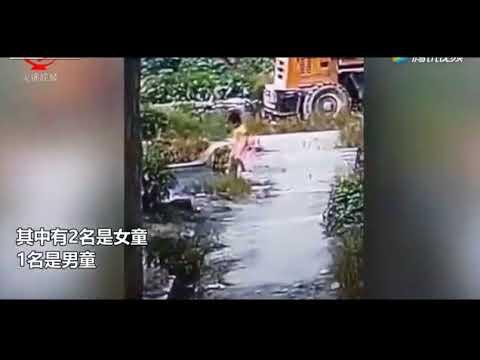 Mueren tres niños: uno se estaba ahogando y los otros dos creyeron que podían ayudarlo