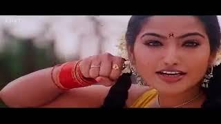 Saiva Karuvadu Full Video Song  Gurudeva