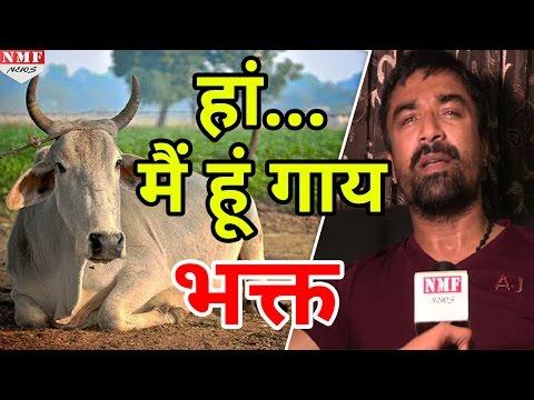 Ajaz Khan ने कहा- 'मैं भी करता हूं गाय की इज्जत, मुझे गालियां मत दो'