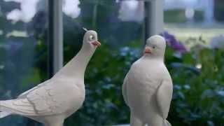 TV Spot - Birds Eye Live Tweeting - Steamfresh Asian Medley - Get Your Veggie Fix On