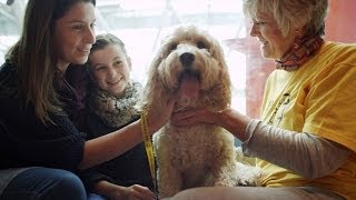 Dog Helps Sick Child - Secret life of Dogs - BBC