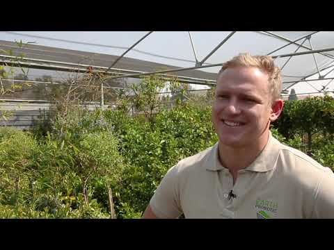 Earth Probiotic Case Study