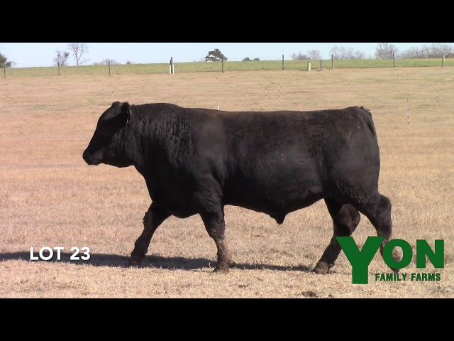 Yon Family Farms Lot 23