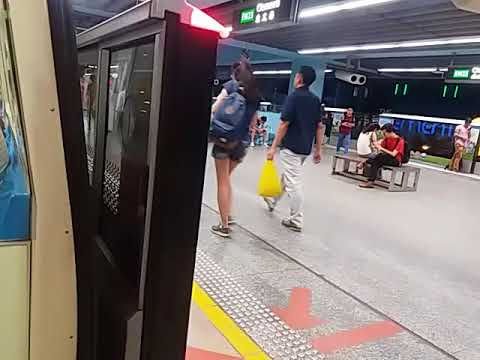 [SMRT] East West Line - GTO VVVF-PWM Siemens C651 Ride From Chinese Garden To Tiong Bahru
