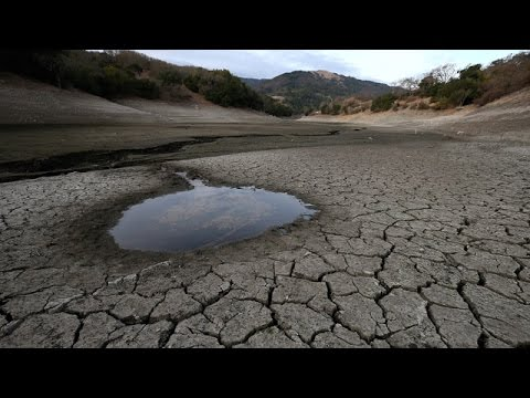 KQED NEWSROOM: California's Extreme Drought