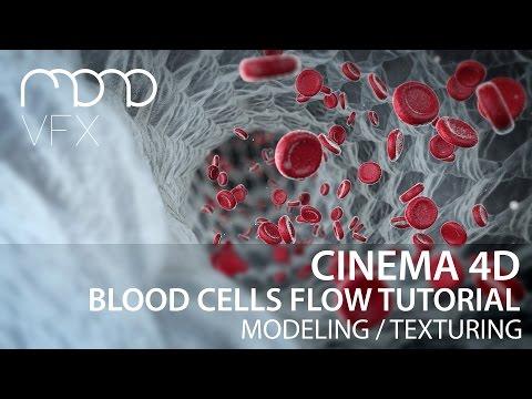 Cinema 4D - Blood cells flow tutorial part 1