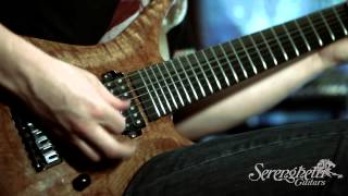 Serenghetti Guitars 7 String Demo (New Grooves - Periphery cover)