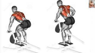 Bodybuilding Exercises/ Best Back workouts For Mass