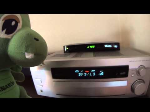 Dragon In Anton Apartment