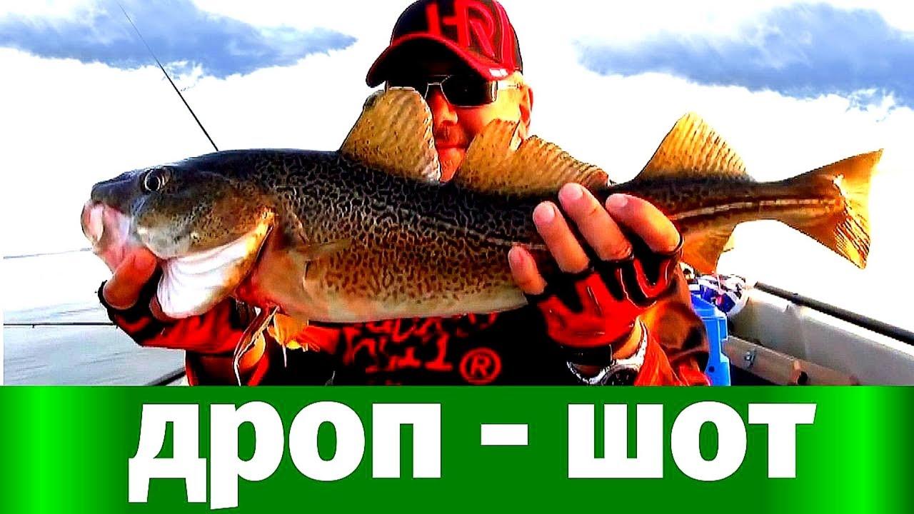 Дроп шот ( DropShot) на Балтике. Одна из лучших рыбалок в жизни.