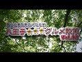 八王子三つ星グルメ散策Vol.2 の動画、YouTube動画。