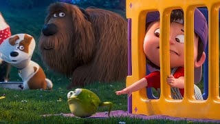 Parenting Advice for Max Scene - THE SECRET LIFE OF PETS 2 (2019) Movie Clip