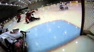 Sledge Hockey - A Player