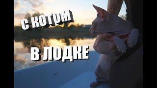 Прогулка на лодке с котом. Полтава , река Ворскла