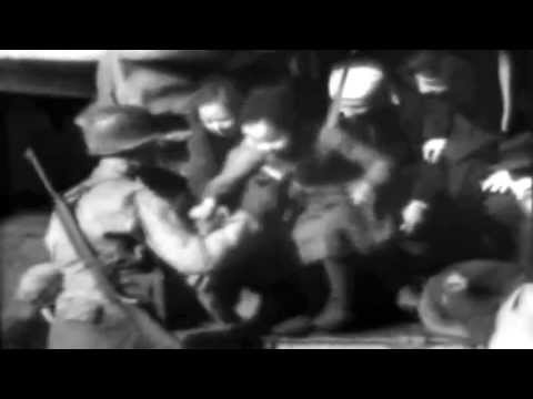 WWII Displaced Persons 1945 Army newsreel - The Army-Navy Screen Magazine #2 Navy Edition