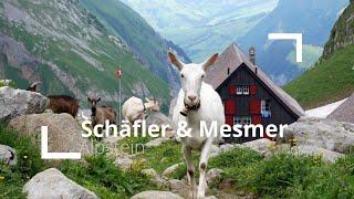 Rundwanderung Im Alpstein | Wildkirchli, Schäfler, Mesmer, Meglisalp