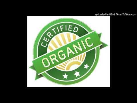 Organic Ft. J-Dizzle ( Prod. by NINETY8 )