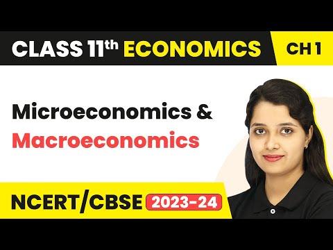 Microeconomics and Macroeconomics - Introduction | Class 11 Economics
