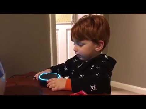 Alexa play digger digger - YouTube