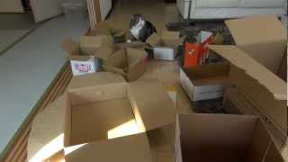 多過ぎる箱とねこ。-Too many boxes and Maru.- thumbnail