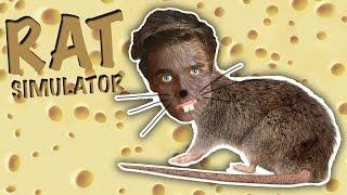 LIVING THAT RAT LIFE | Rat Simulator