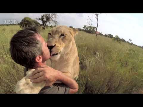 LION HUGGING | The Lion Whisperer