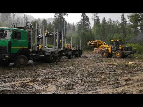 Погрузка лесовоза МАЗ 6х6