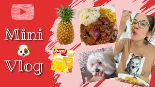 Mini Vlog; Flojera, caminata, Gelatina, Lomo saltado, TikTok con mi Perro, comiendo I Lorentix