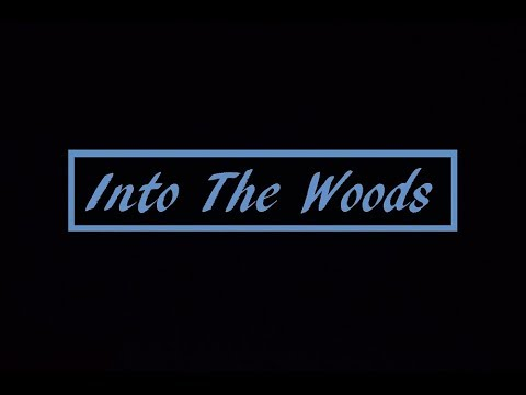 Into The Woods | CHANNEL TRAILER