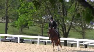 Video of DICAPRIO ridden by CHRISTOPHER PAYNE from ShowNet!
