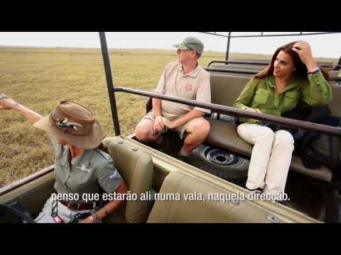 A Aventura da Catarina na Gorongosa